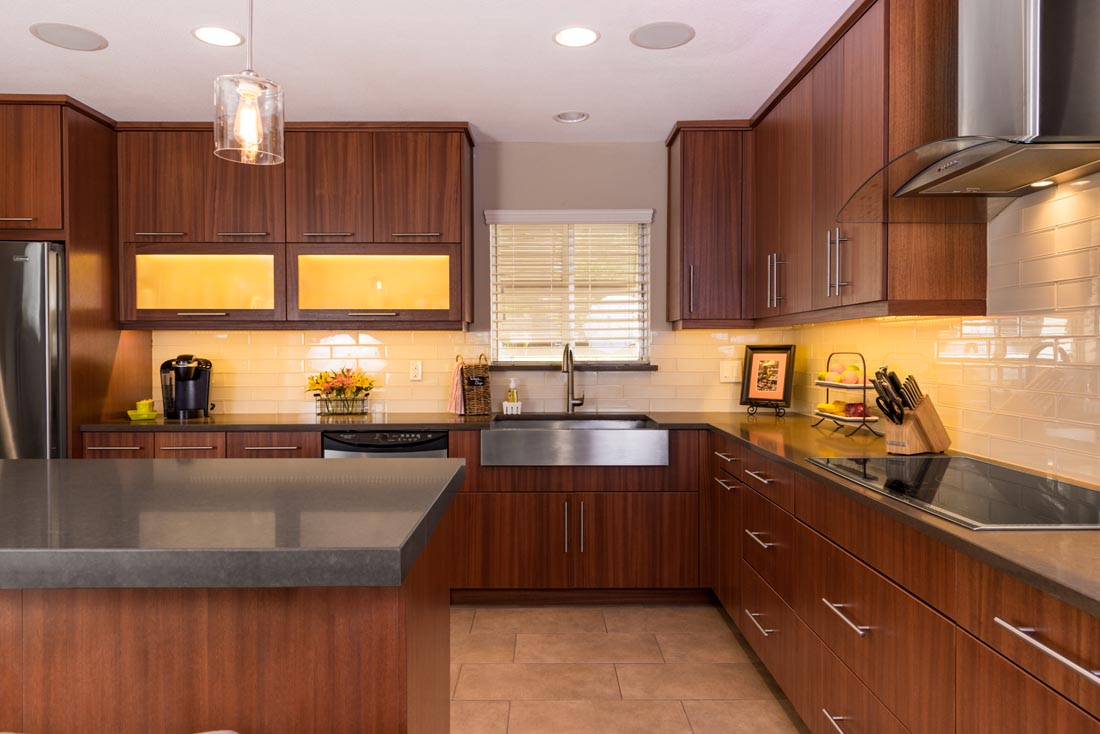 Contemporary Sleek Kitchen 1